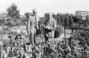 Aardenhoek 2 in 1978 met voorzitter Camille Gronkel en penningmeester Douwe Jan Cupido tijdens de viering van het 60-jarige bestaan van de BAT. Foto: Stadsarchief Breda; fotocollectie BN de Stem/J. van Gurp.