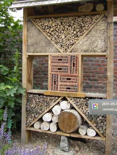 Insecten hotels maken vereniging de bredase amateur tuinder for Een doosje vol geluk waar te koop