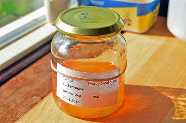 Tomatenzaad oogsten  (8bk)